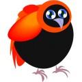 Pt Bird 04